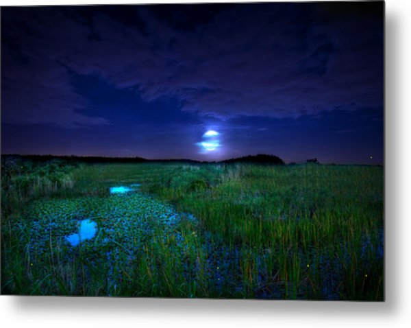 Full Moons And Fireflies Metal Print