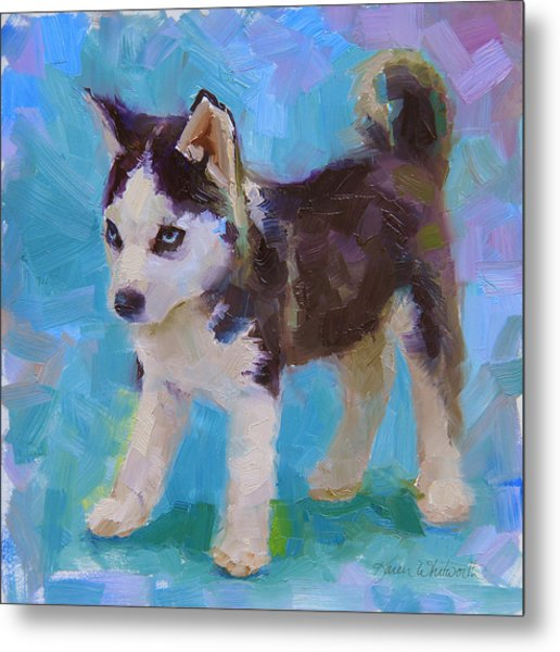 Alaskan Husky Sled Dog Puppy Metal Print