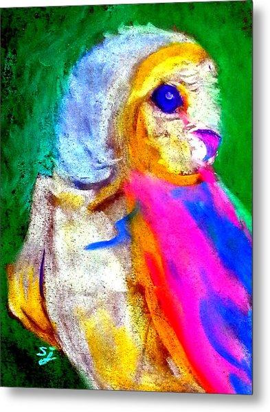 Funky Barn Owl Art Print Metal Print