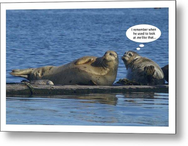 Funny Seals Metal Print