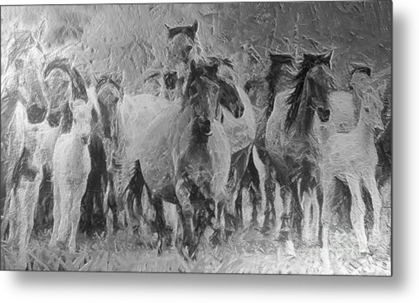 Galloping Horse Team Metal Print