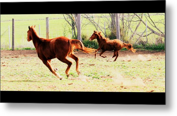Galloping Horses Metal Print by Arie Arik Chen