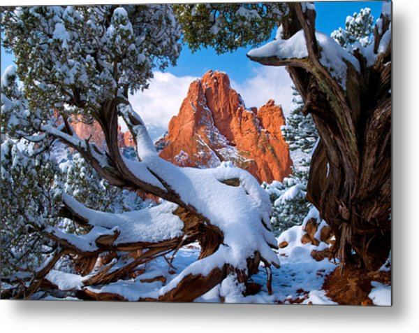 Garden Of The Gods Framed By Juniper Trees Metal Print