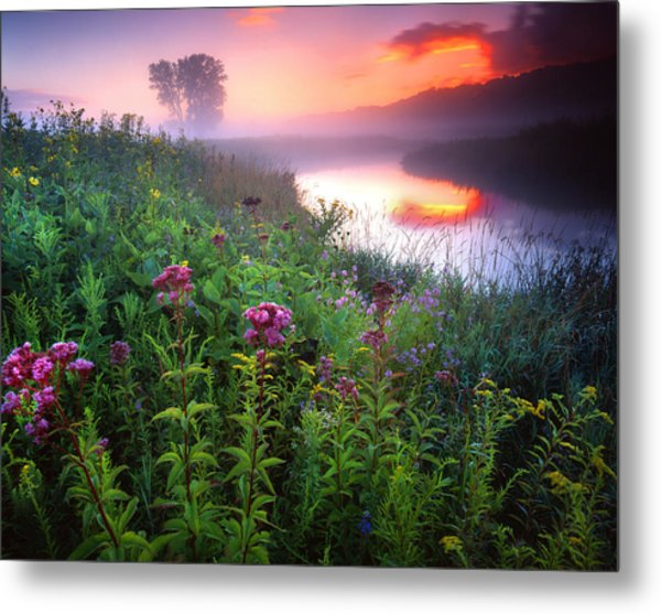 Garden On The Creek Metal Print