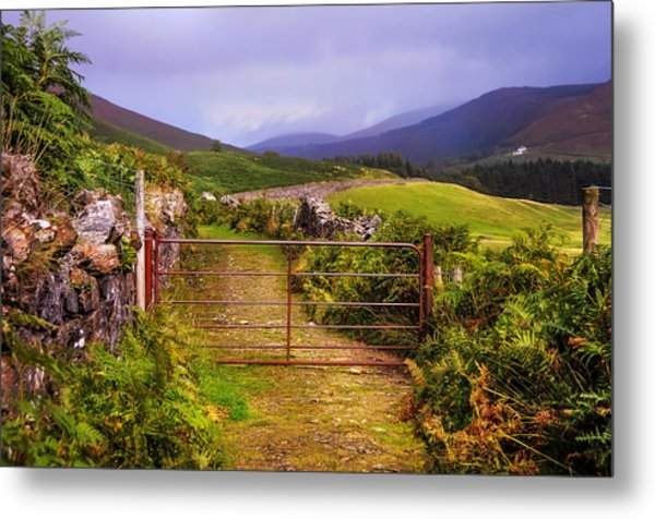 Gates On The Road. Wicklow Hills. Ireland Metal Print