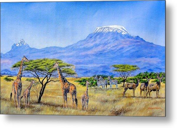 Gathering At Mount Kilimanjaro Metal Print