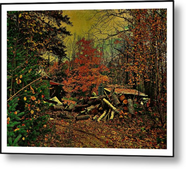 Gathering Wood For Winter  Metal Print by Dianne  Lacourciere
