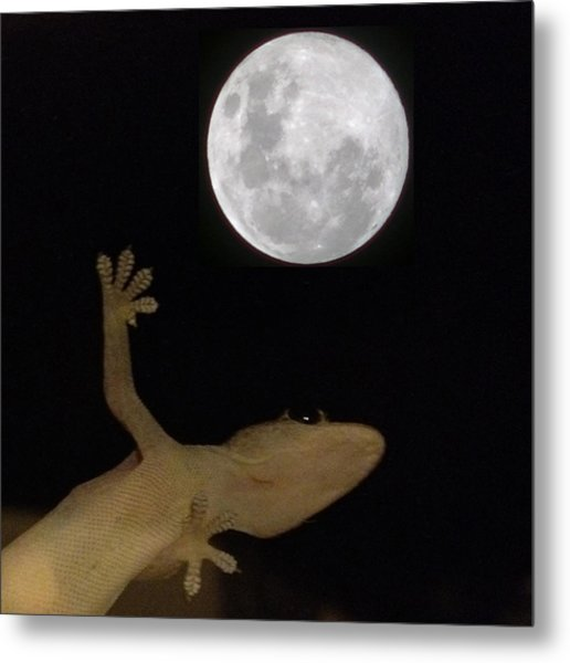 Gecko Moon Metal Print