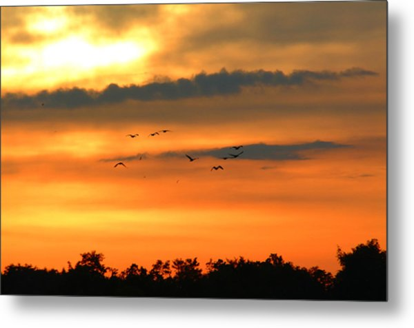 Geese Into The Sunset Metal Print