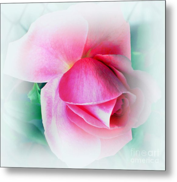 Gentleness And Grace Metal Print