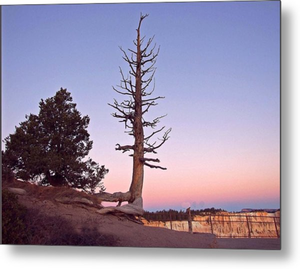 Gently The Sun Sets Metal Print by Judith Russell-Tooth