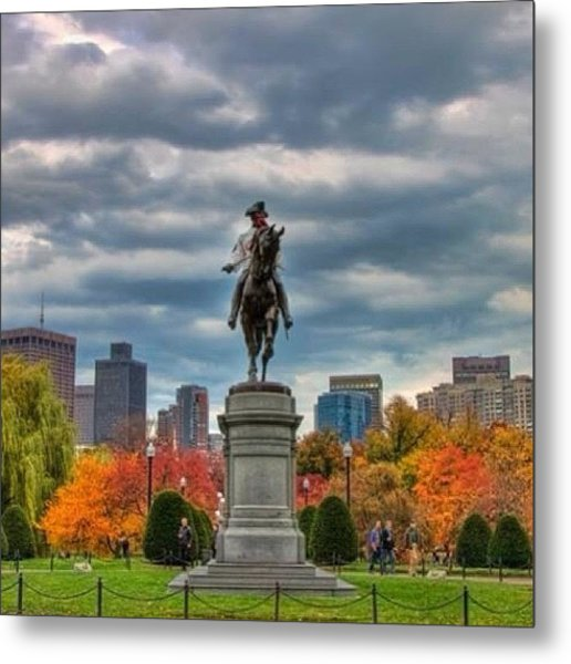 George In The Public Garden On A Late Metal Print