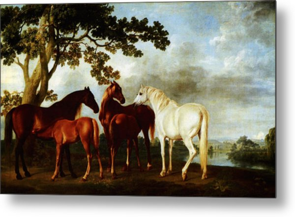 Metal Print featuring the painting Horses by George Stubbs