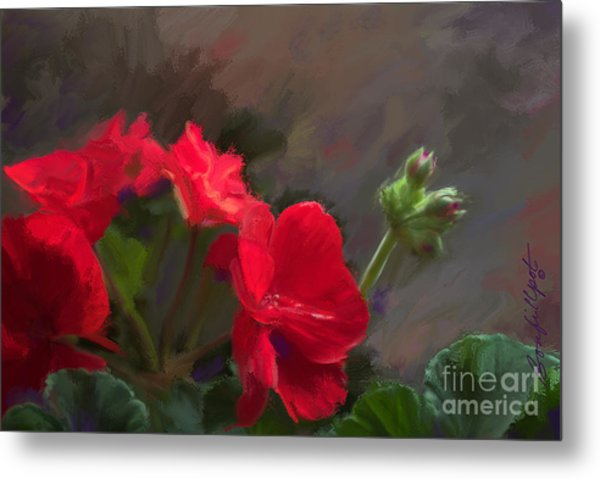 Geranium In Red Metal Print