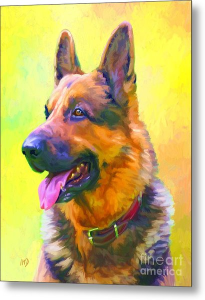 German Shepherd Portrait Metal Print by Iain McDonald