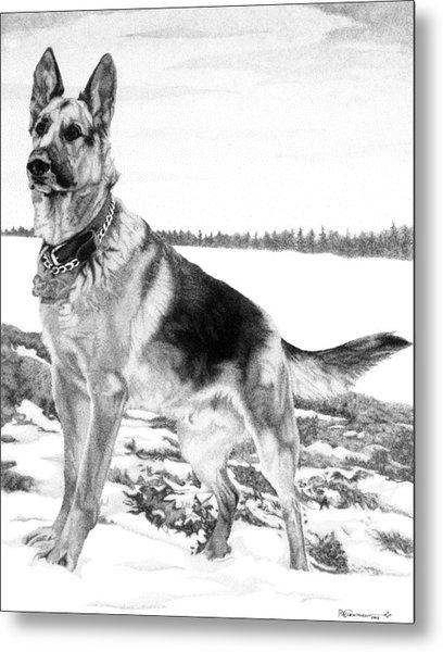 Metal Print featuring the drawing German Shepherd by Rob Christensen