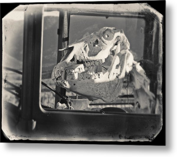 Metal Print featuring the photograph Ghost Car Of Equine Death by David Bailey