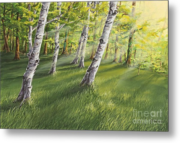 Ghosts In The Woods Metal Print