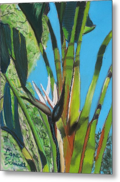 Giant White Bird Of Paradise Metal Print