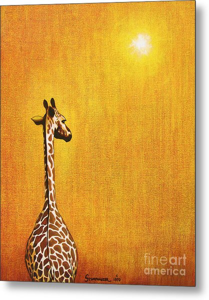 Giraffe Looking Back Metal Print