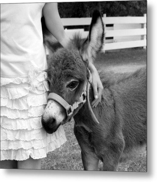 Girl And Baby Donkey Metal Print