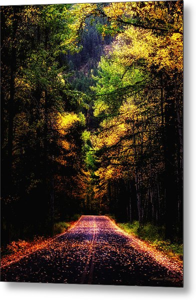 Glacier Fall Road Metal Print