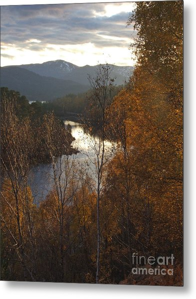 Silver And Gold - Glen Affric Metal Print