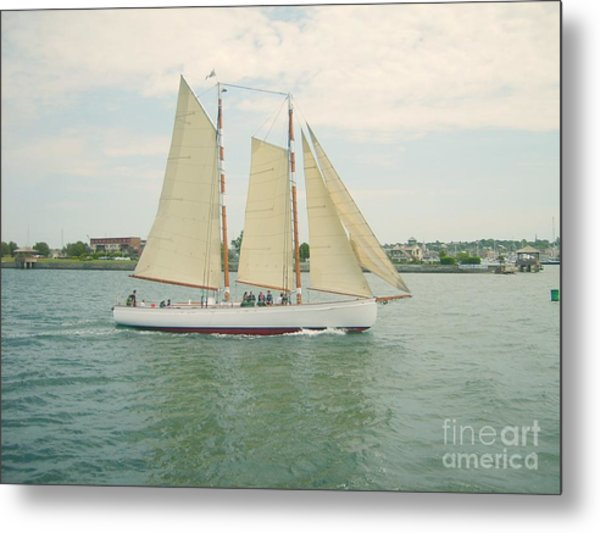 Gliding In Full Sail Metal Print