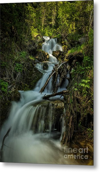 Glow At The Top Metal Print by Mitch Johanson