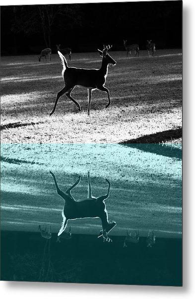 Glowing Buck Reflection Metal Print