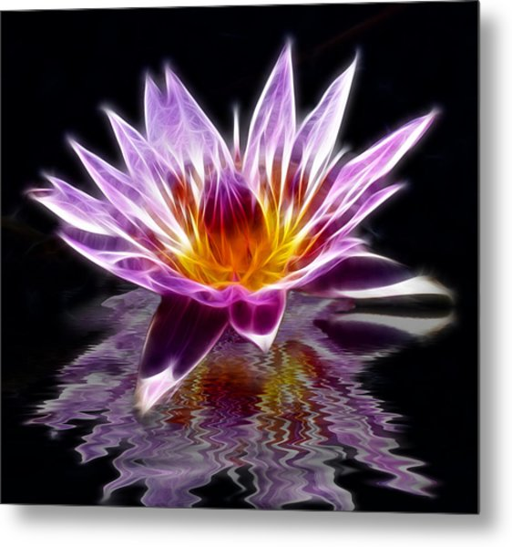Glowing Lilly Flower Metal Print