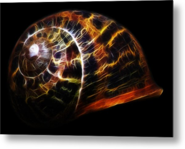 Glowing Shell Metal Print