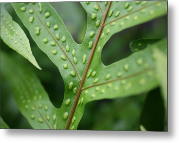 Go Green Metal Print