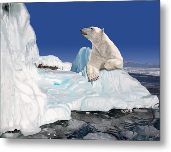 Go With The Floe Metal Print