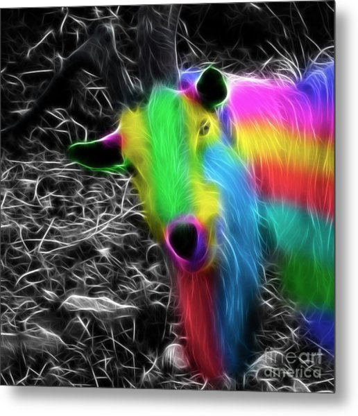 Goat Of Colour Metal Print by Jo Collins