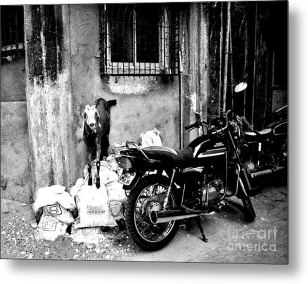 Goatercycle Black And White Metal Print