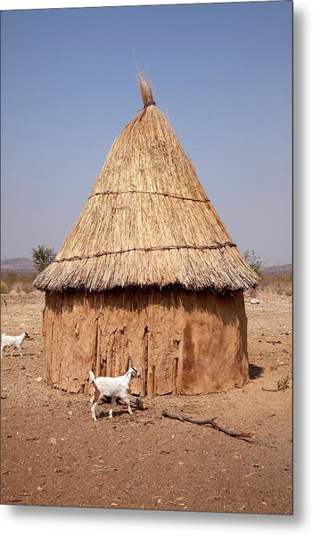 Goats And Hut In Himba Village, Opuwo Metal Print by Jaynes Gallery