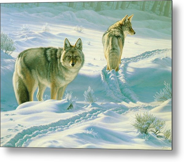 God's Dogs Metal Print