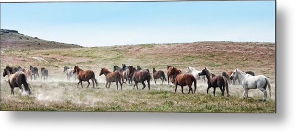 Going To Higher Ground Metal Print by Gene Praag