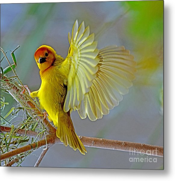 Golden Angel Metal Print