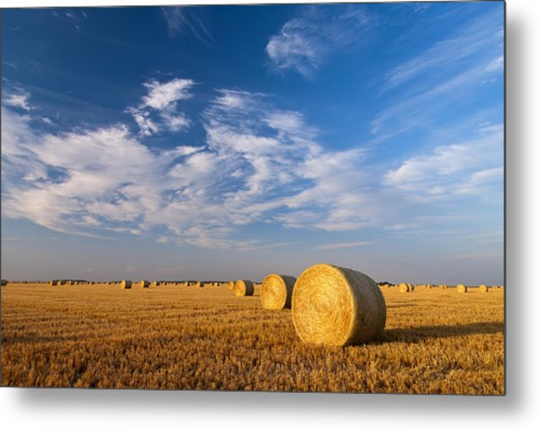 Golden Brown Metal Print