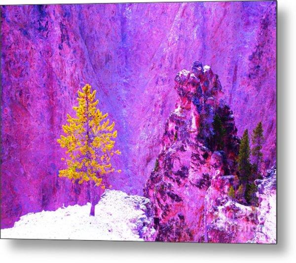 Golden Christmas In Yellowstone Metal Print