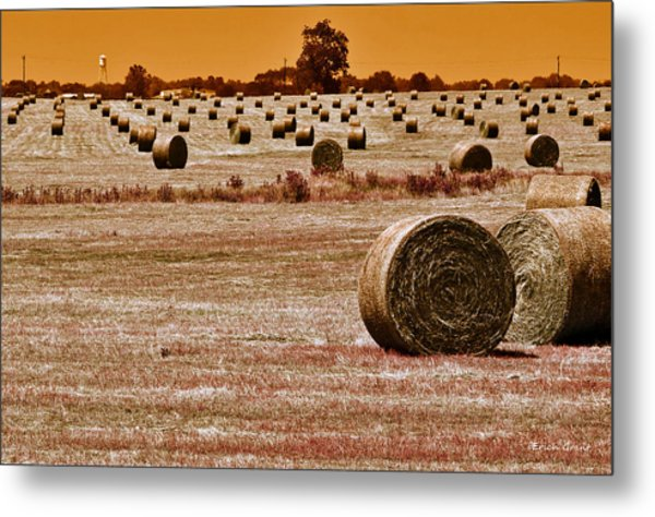 Golden Country Metal Print