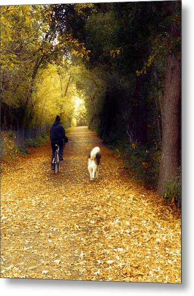 Golden Days Of Fall Metal Print