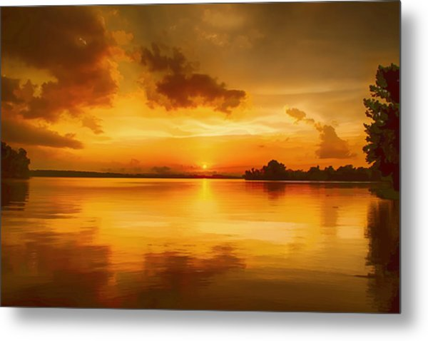Golden Honey Sunset Metal Print by Dan Holland