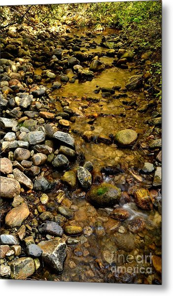 Golden Klo Creek Metal Print by Phil Dionne