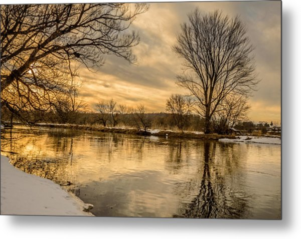 Golden Light Metal Print