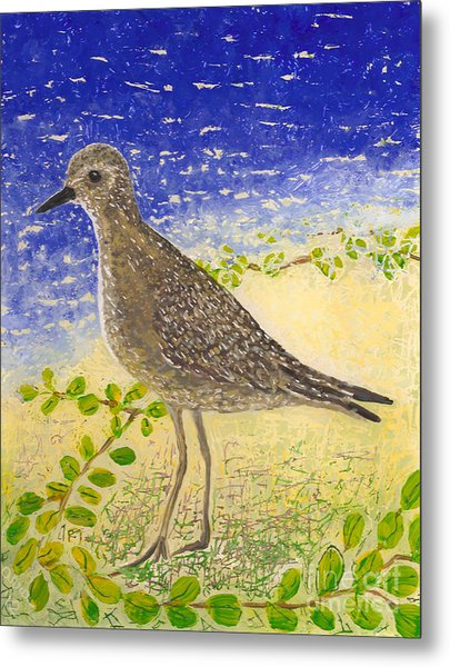 Golden Plover Metal Print