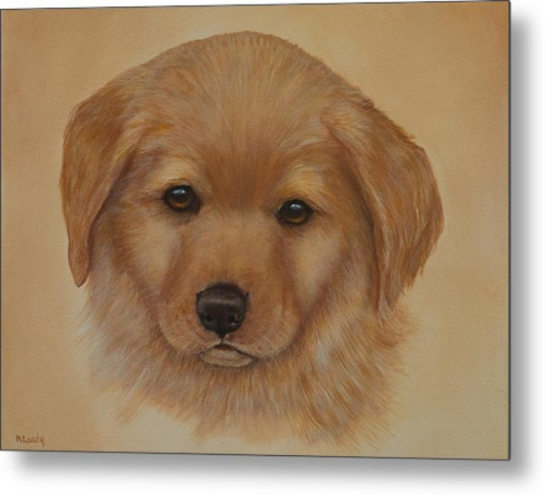 Golden Puppy Metal Print