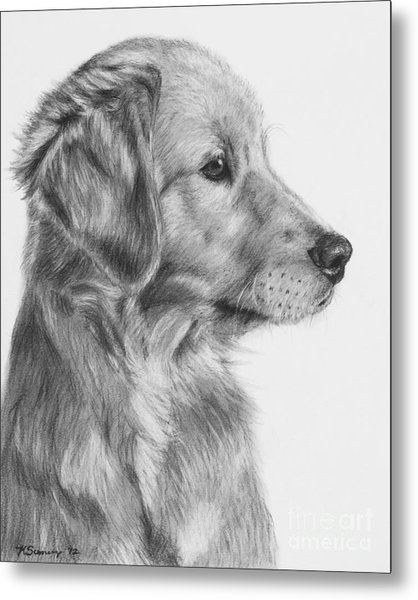 Golden Retriever Puppy In Charcoal One Metal Print